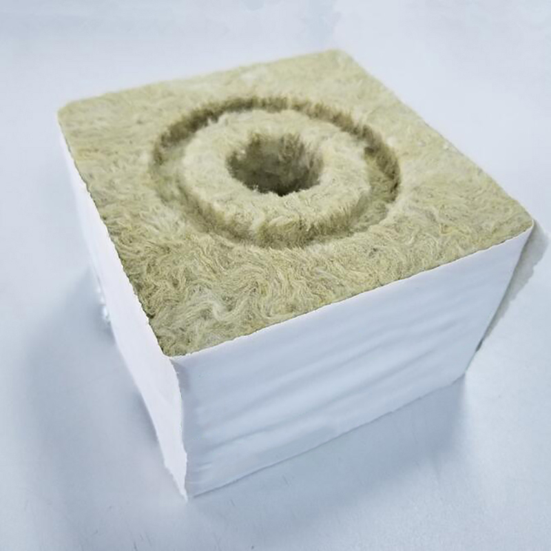 how to grow seeds in rockwool cubes